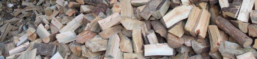 fuelwood860